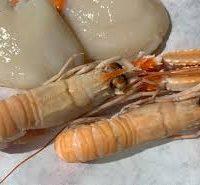 Duo de saint-jacques et langoustines sur lit de poireaux tiédis, sa bisque de crustacées