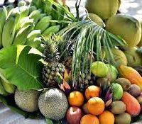 Vacherin aux saveurs des Caraïbes légèrement mentholées